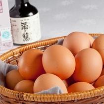 梅たまご&湯浅醤油