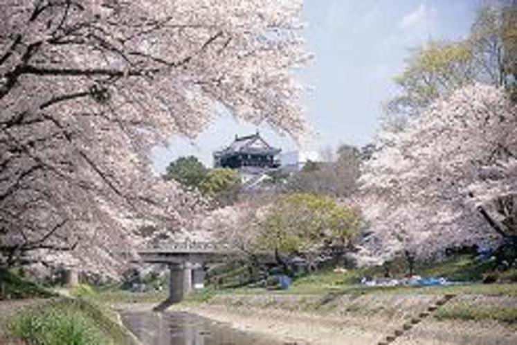 桜の岡崎城