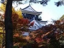 紅葉の間から見る岡崎城