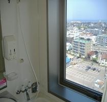 バスルーム窓