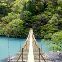 *【寸又峡(一例)】一度は渡りたい橋として世界的に有名です。