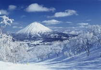 羊蹄山(冬)