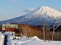 冬の羊蹄山とフリーダムイン