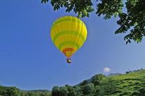 熱気球 搭乗