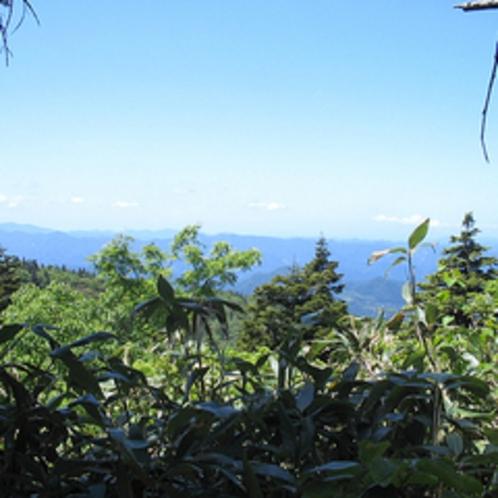 *森吉山/豊かな自然の中を散策(風景一例)