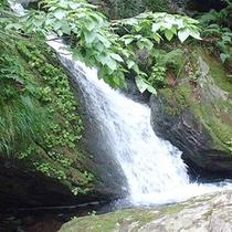 *周辺景色/心地よい水の流れが心を洗います