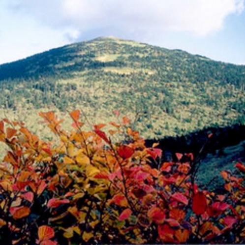 *森吉山/秋は美しい紅葉にうっとり