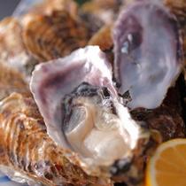 11月から地元産牡蠣セット開始!