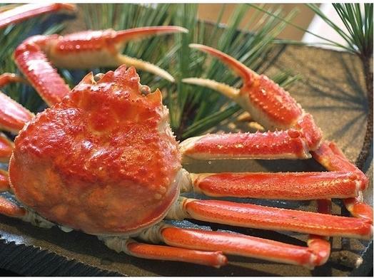 【本場の蟹×冬旬】 冬の王様♪活き本ずわい蟹を「茹で&刺し&鍋&雑炊」で贅沢三昧!♪ 〜旬魚食通〜