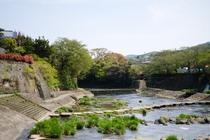 嬉野川沿いを散策