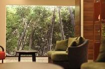 中津万象園の竹林とラウンジ