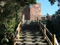 足摺岬・展望台への階段