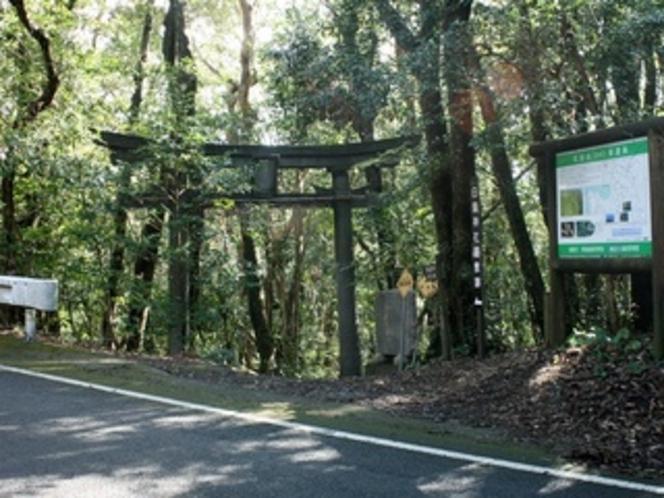 白皇山入口