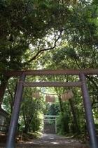 天岩戸神社東本宮(本殿)