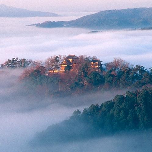 天空の白とも言われる備中松山城が雲海に浮かんだ姿は幻想的です。