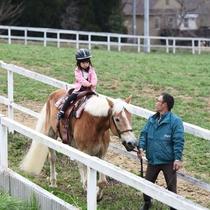 かわいいお馬さん♪岡山乗馬倶楽部で乗馬体験をお楽しみください