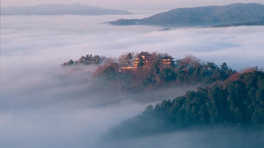 【観光】備中松山城