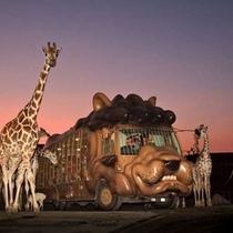 九州自然動物公園「アフリカンサファリ」は、車で40分