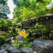 夏 日本庭園