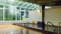 【温泉大浴場】日本唯一の植物性モール温泉。美肌の湯として評判です