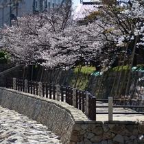 岸和田城の石垣