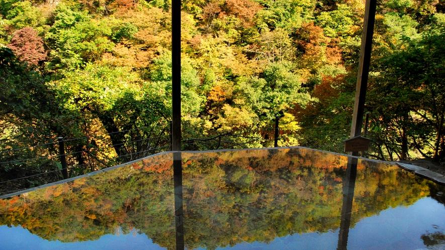 【四季舞台-たな田】春の山桜、こぶしの花、初夏の新緑、秋の紅葉、冬は雪見風呂も楽しめます。