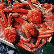 (別注)ずわい蟹A ※郵送も可能です