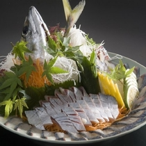 【ご夕食】関サバの姿造り(別注料理)