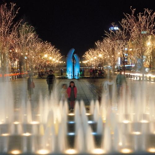 クリスマスシーズンのイルミネーション「みなと大通り公園」
