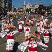 鹿児島最大のお祭り「おはら祭り」