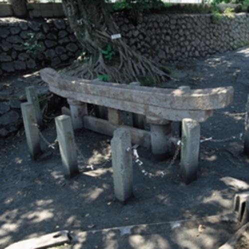 桜島の火山灰に埋もれている珍しい鳥居