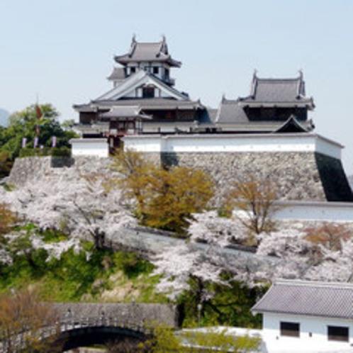 福知山城(春)