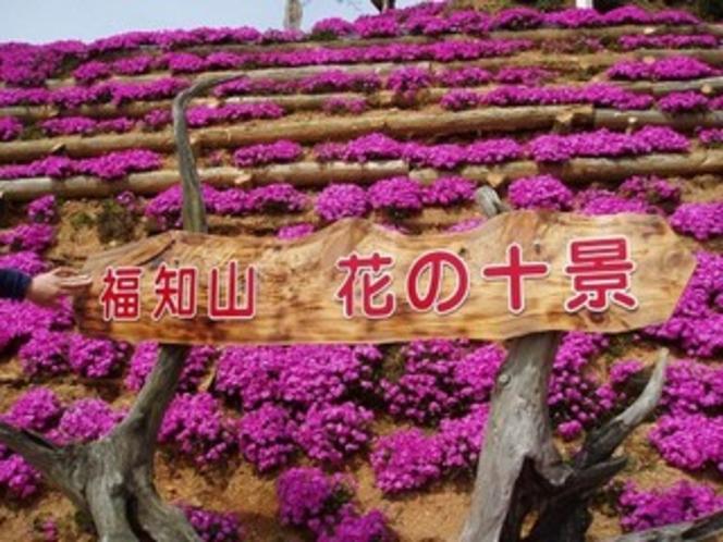 福知山花の十景