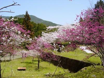 春の森ガ内