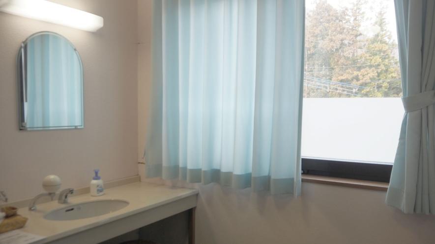 *洗面台/洗面台は2台、ドライヤーやハンドソープなども完備しております。