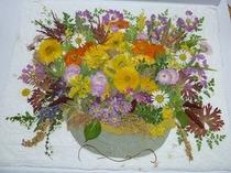 押し花「花々」