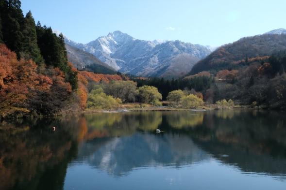 【ファミリー】1泊2食付 家族で新潟の夏を楽しむ!田舎体験プラン♪大浴場時間制貸切!