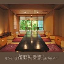 【新館和室(楠の間)】窓からは光と緑があざやかに差し込む和室です