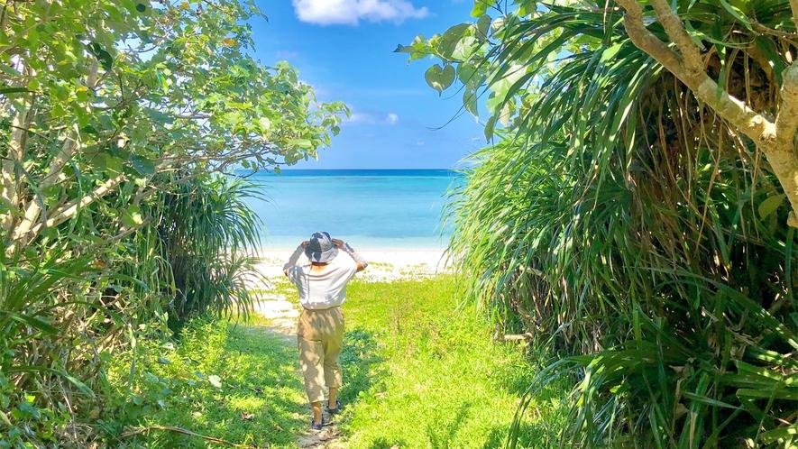 ウッパマビーチは自然豊かな天然ビーチ