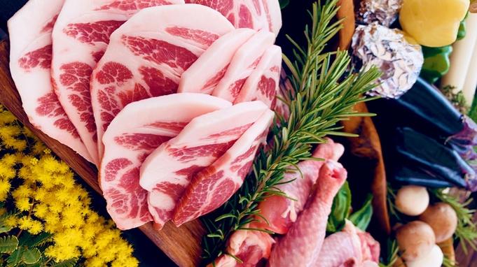 【秋冬旅セール】 ★2食付★夕食お部屋のテラスでnatural BBQ!