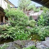 *【施設一例:中庭】緑がいっぱいの中庭には、鯉の姿も。
