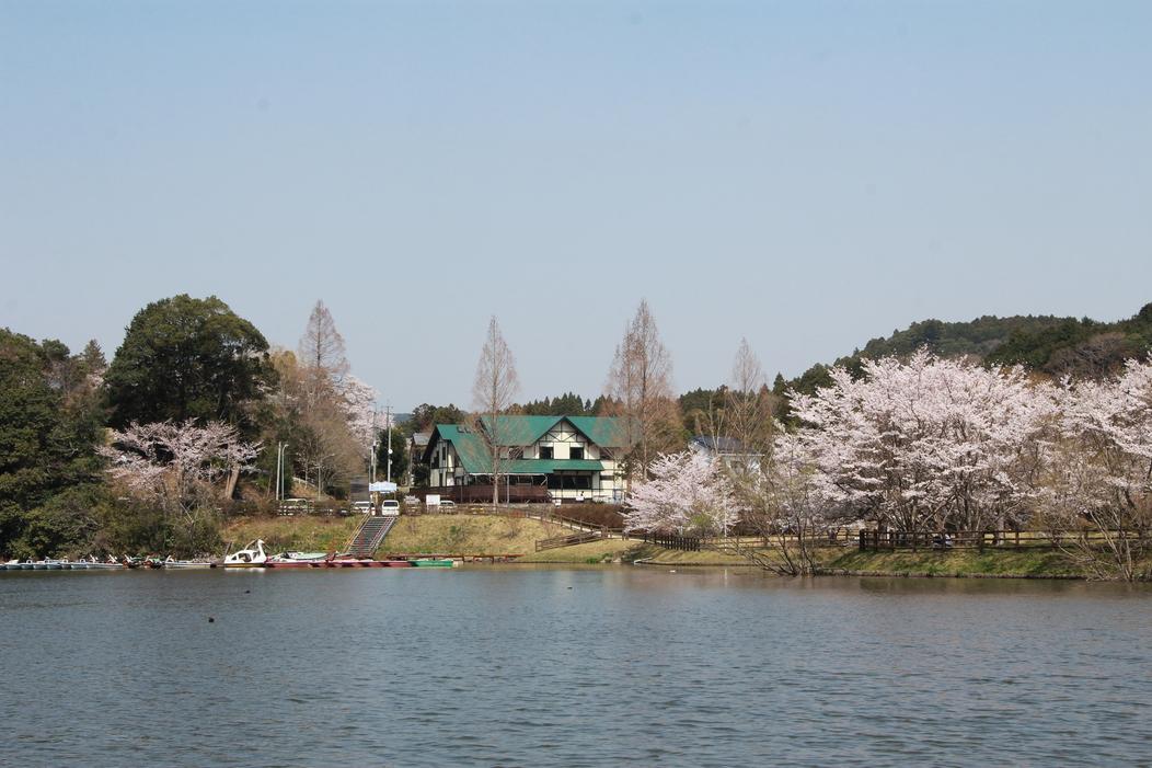 亀山湖からの宿・春