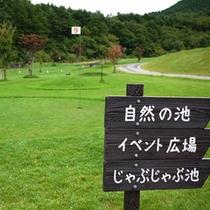 パークゴルフ