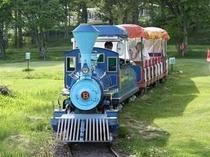 ファミリーランド森林鉄道