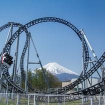 富士急ハイランド(ホテルから車で約40分)高飛車