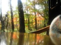 コテージ棟の部屋から眺める紅葉