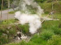 宿のまわりには、蒸気がモクモクと噴出すスポットが。はじめての人には驚きかも!?