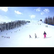 スキー(※イメージ画像)