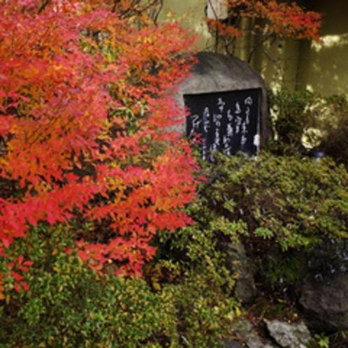 玄関脇のツツジと小杉放庵碑