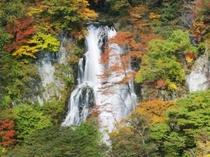 霧降の滝の紅葉
